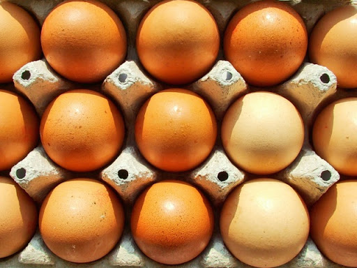 Benefits of Organic Eggs